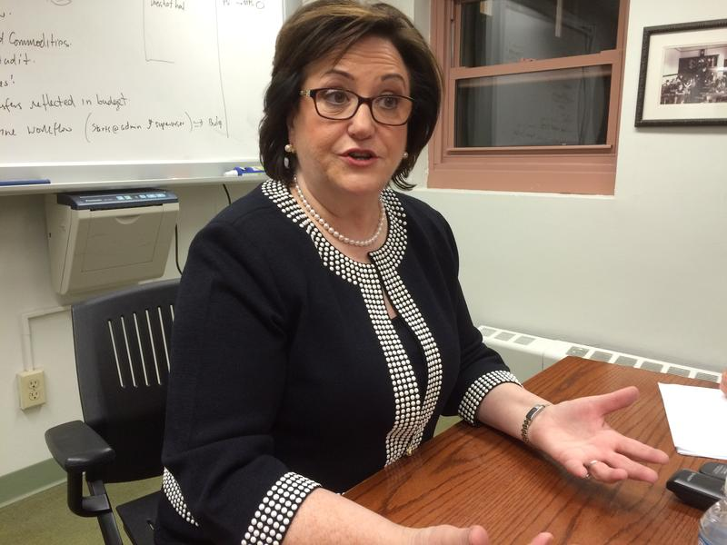 State Education Commissioner MaryEllen Elia said elementary and middle school students demonstrated progress this year, even though the tests were different
