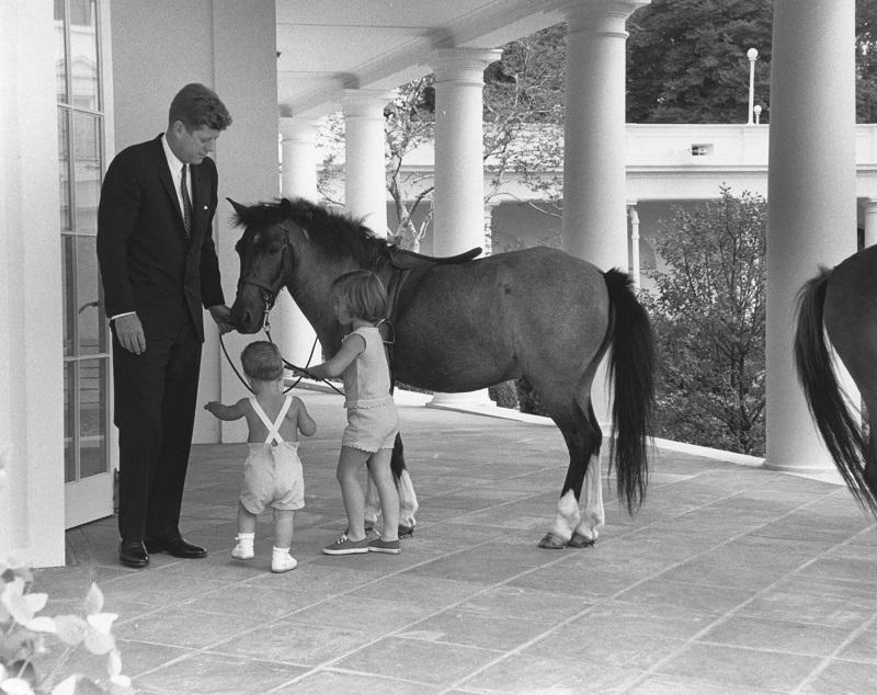 Outside the White House's Oval Office, American President John F. Kennedy (1917 - 1963) and his children, John (1960 - 1999) and Caroline, play with pony Macaroni, Washington DC, June 22, 1962.