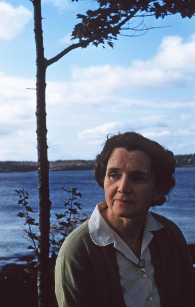 Rachel Carson on her porch in Southport, Maine (1955).