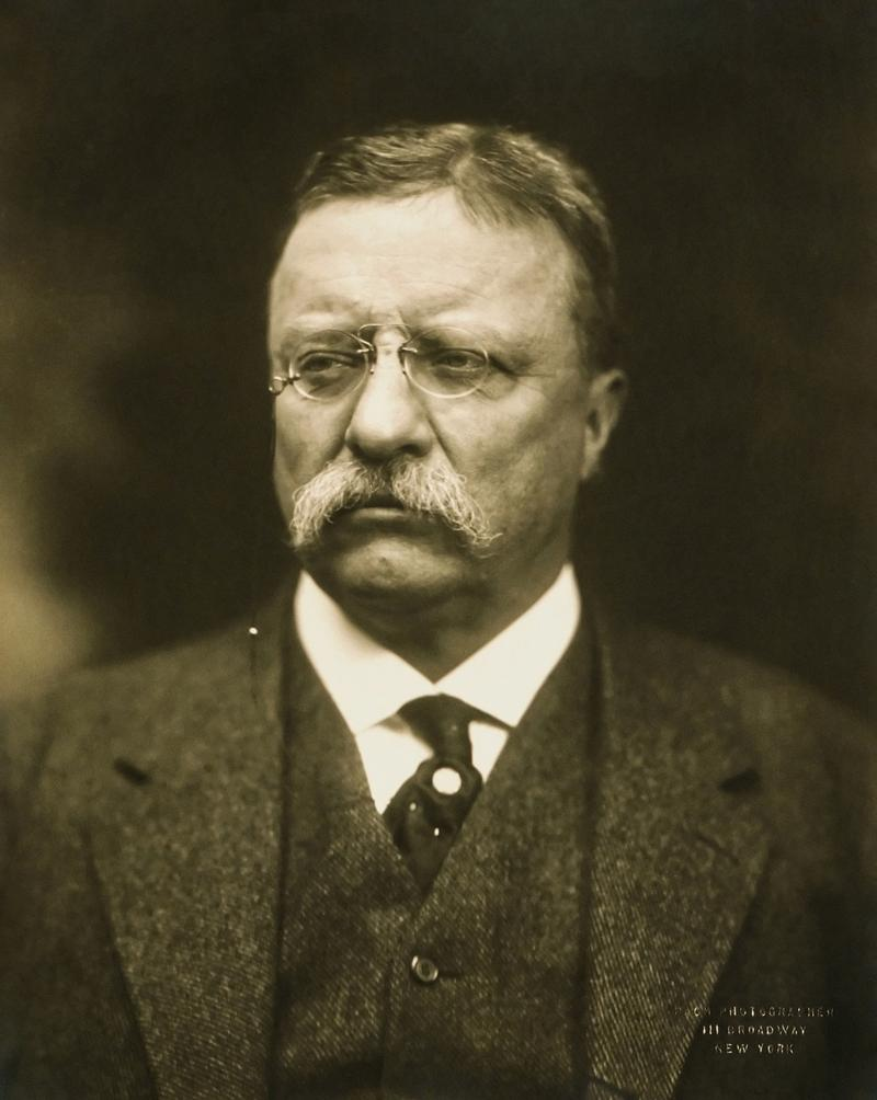 Theodore Roosevelt was played an important role in the progressive movement and changing the political landscape in America.