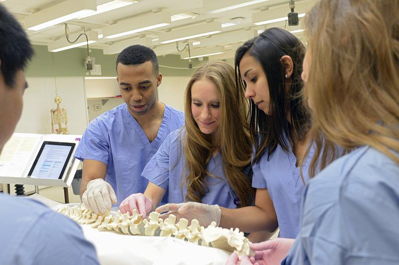Michael Nguyen, Oliver Stewart, Alexa Steuer, Bianca Kapoor, Samantha Ayoub are studying to become doctors at New York University.