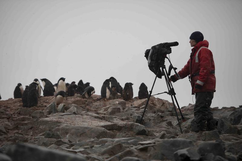 Dena Seidel Filming
