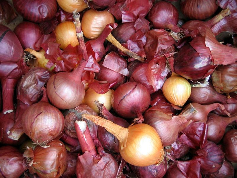 Onion on onion.