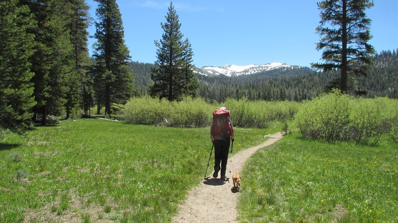 Big Meadow to Echo Summit on the Pacific Crest Trail in California.