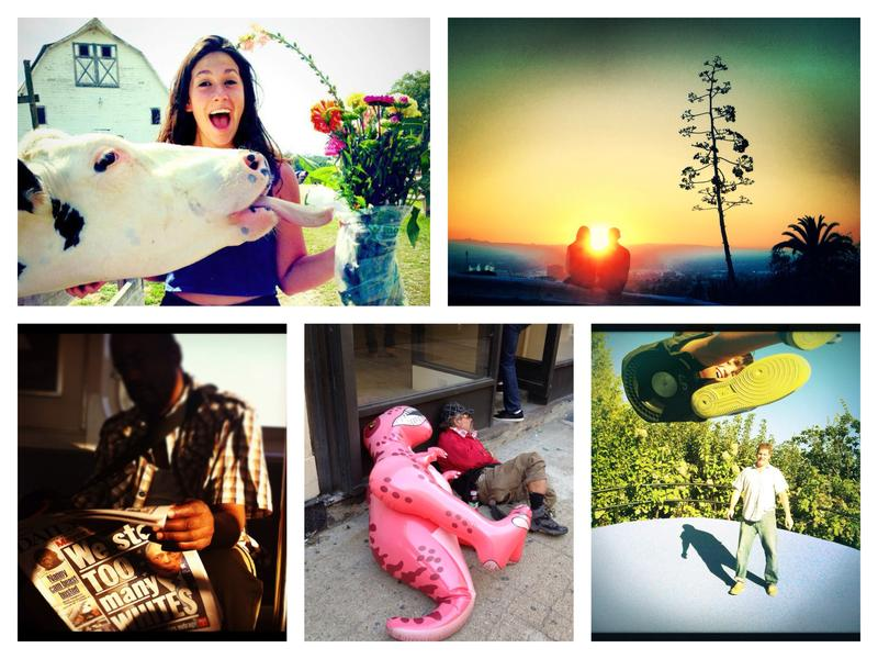 Some of the photos selected as the best of 2013 user-submitted cell-phone pictures