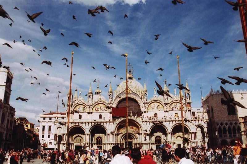 Piazza San Marco and pigeons