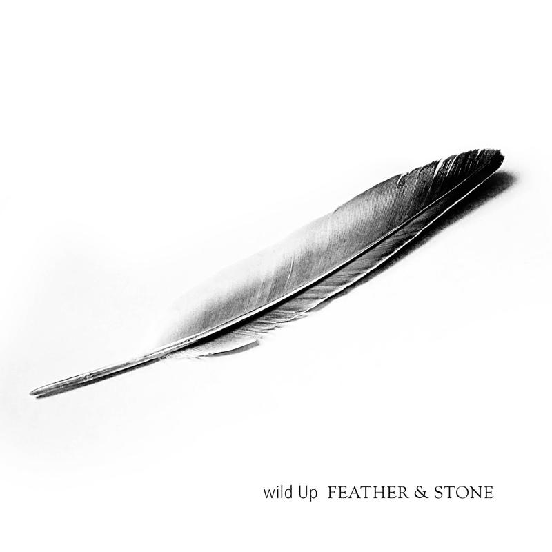 wild Up's 'Feather & Stone'