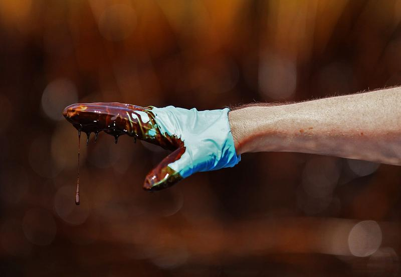 A hand covered with crude oil points to an oiled marsh where oil has come ashore May 26, 2010 in Blind Bay, Louisiana.