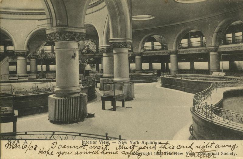 1908 postcard for the new york aquarium at castle garden in battery park