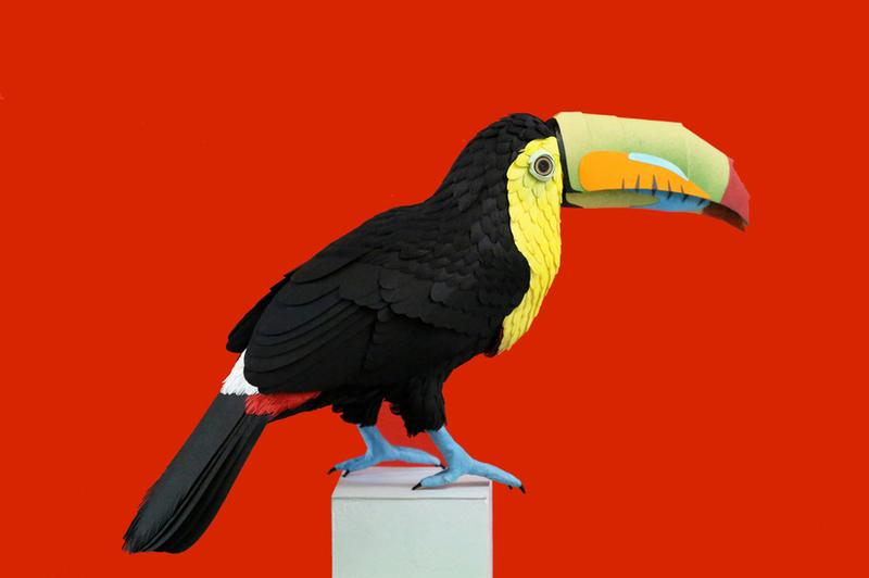 The artist Diana Beltran Herrera specializes in cut-paper sculptures like this toucan