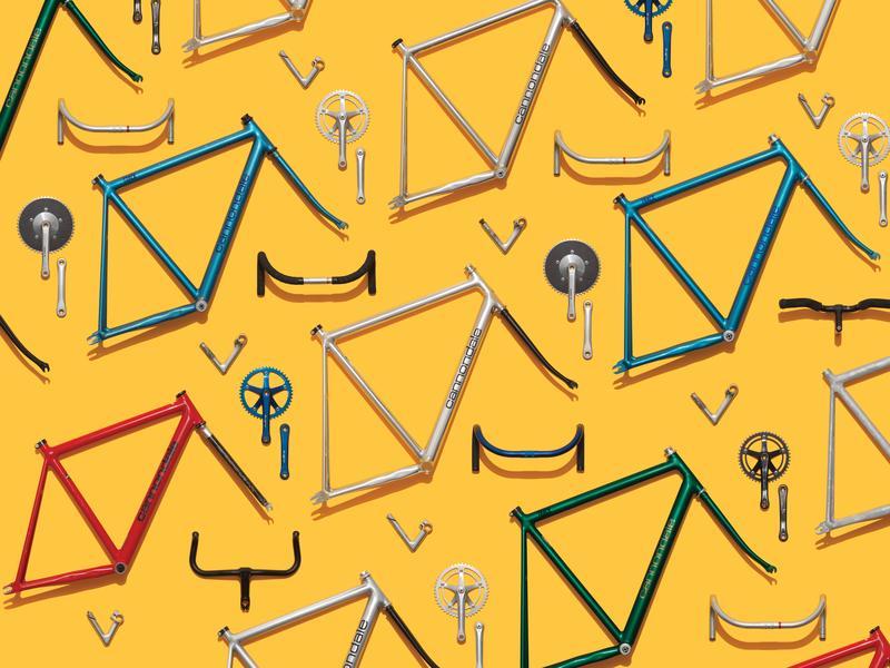 Bike parts neatly organized