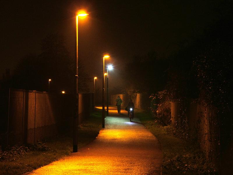 & Bright White Streetlights Giving Bugs the Blues - Hypothesis - WNYC azcodes.com