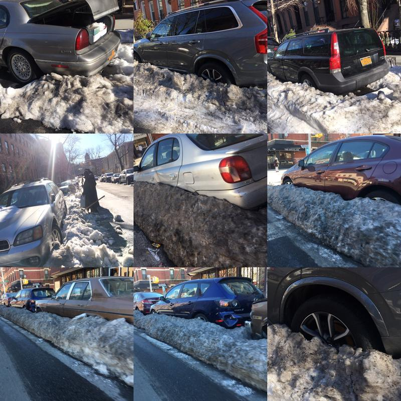 Despite the coating of snow and ice, these cars are all subject to 'alternate side parking rules'.