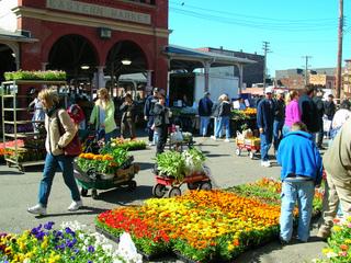 Eastern Market, on Flower Day