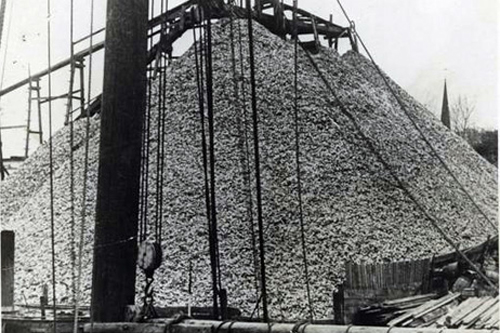 "Oyster shells for oyster ""farming"""