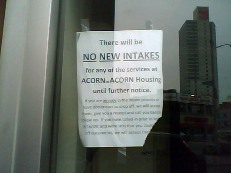 All new services at ACORN have been suspended until a law firm reviews the group's management and services.