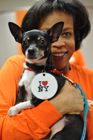 (Photo courtesy of the ASPCA)